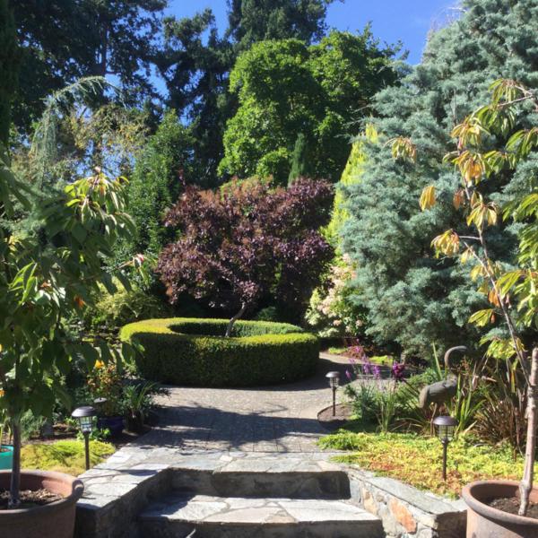 summer-garden-2