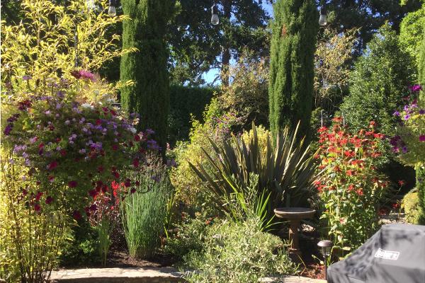 summergardenat4326gordonhead